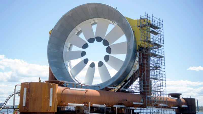 Tidal Power – The future of green energy or a menace to sea life?